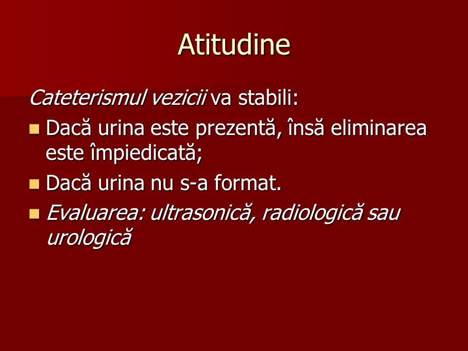 Atitudine Cateterismul vezicii va stabili:
