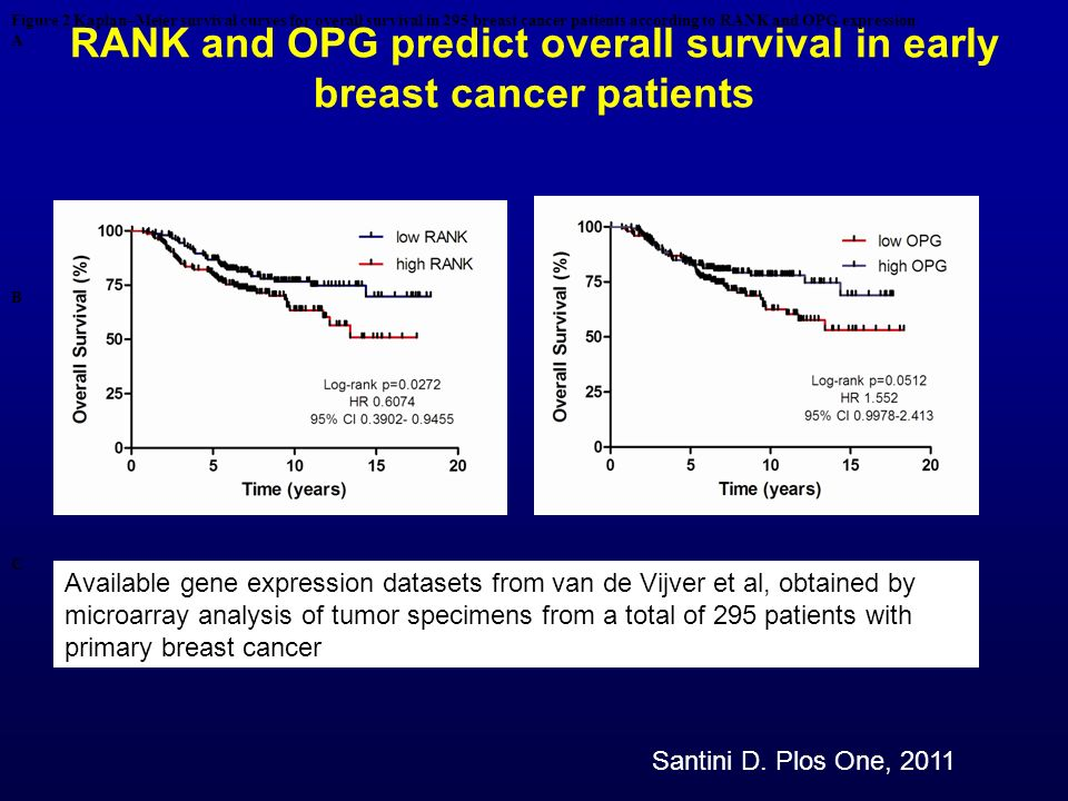 RANK and OPG predict overall survival in early breast cancer patients