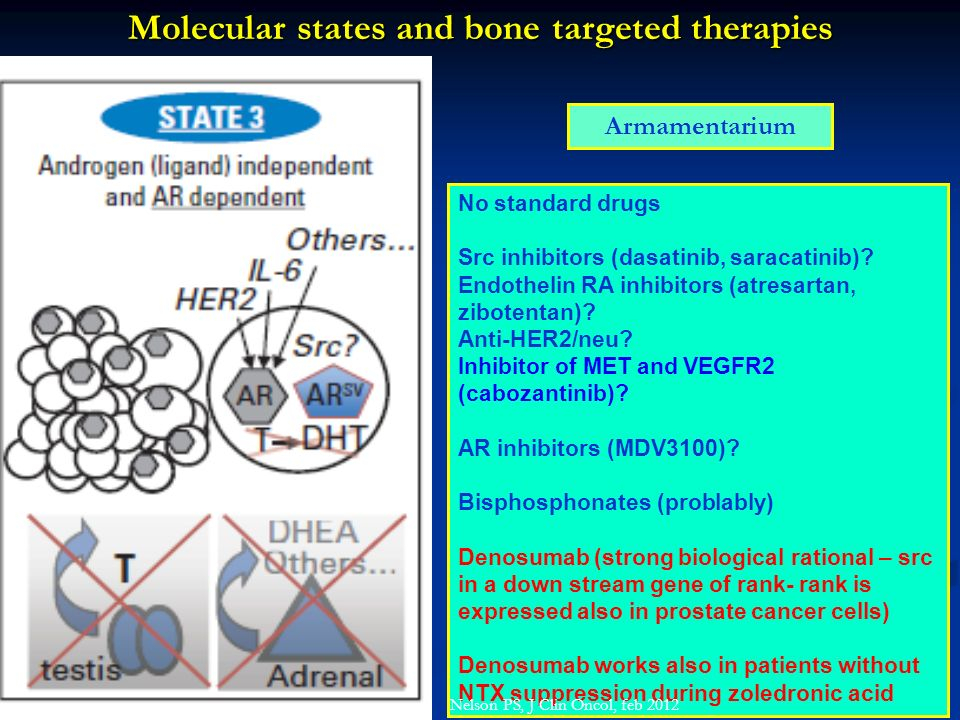 Molecular states and bone targeted therapies