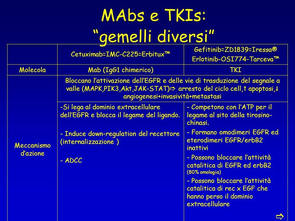 MAbs e TKIs: gemelli diversi