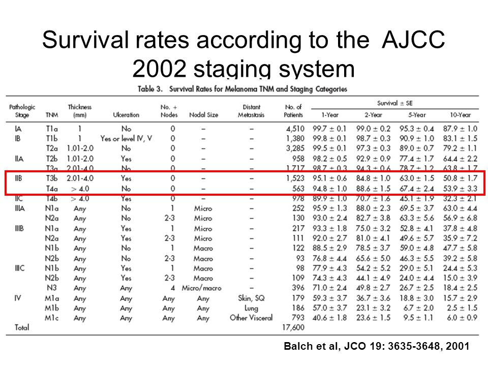Survival rates according to the AJCC 2002 staging system