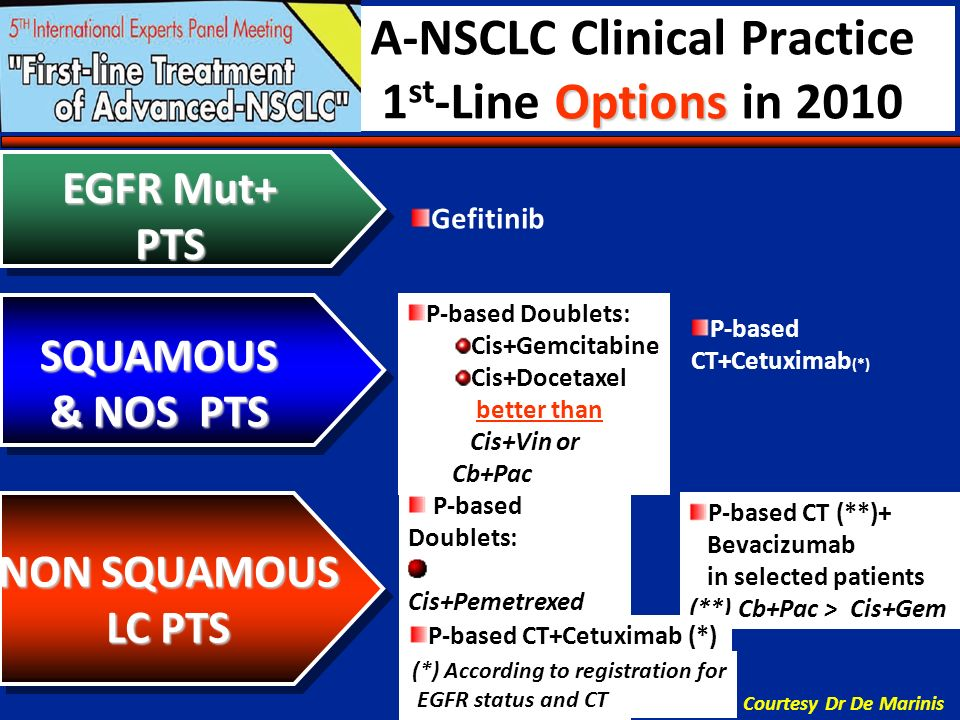 A-NSCLC Clinical Practice 1st-Line Options in 2010