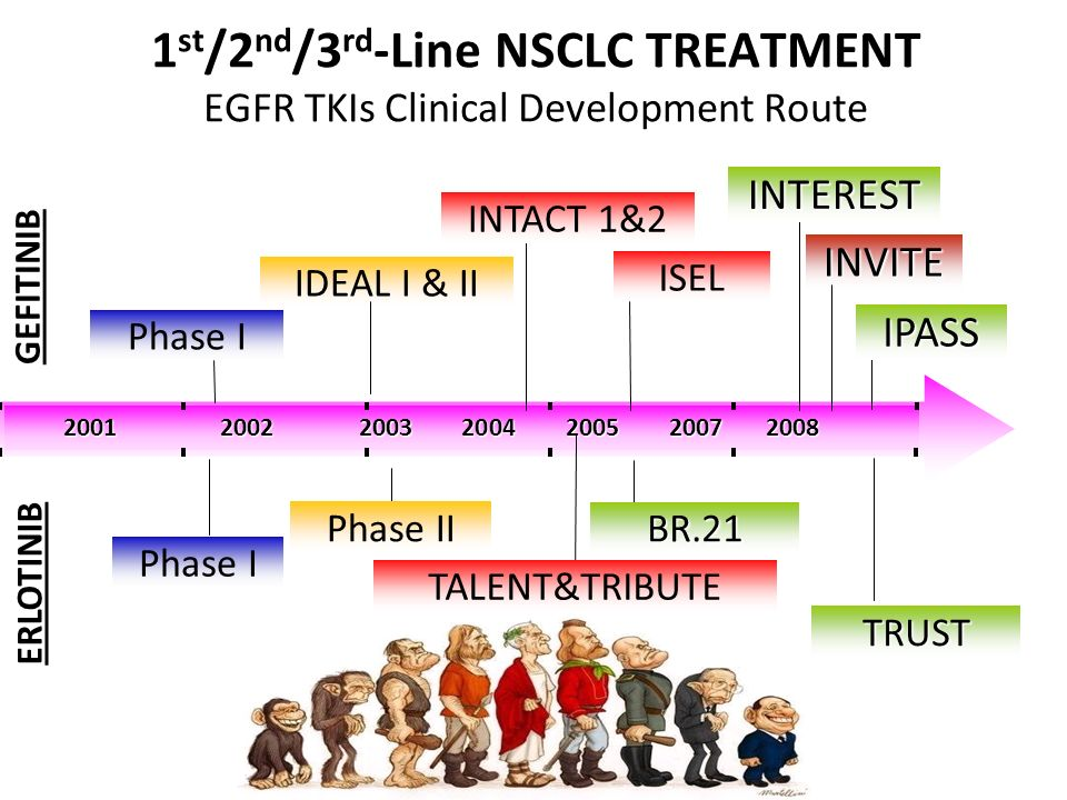 1st/2nd/3rd-Line NSCLC TREATMENT EGFR TKIs Clinical Development Route