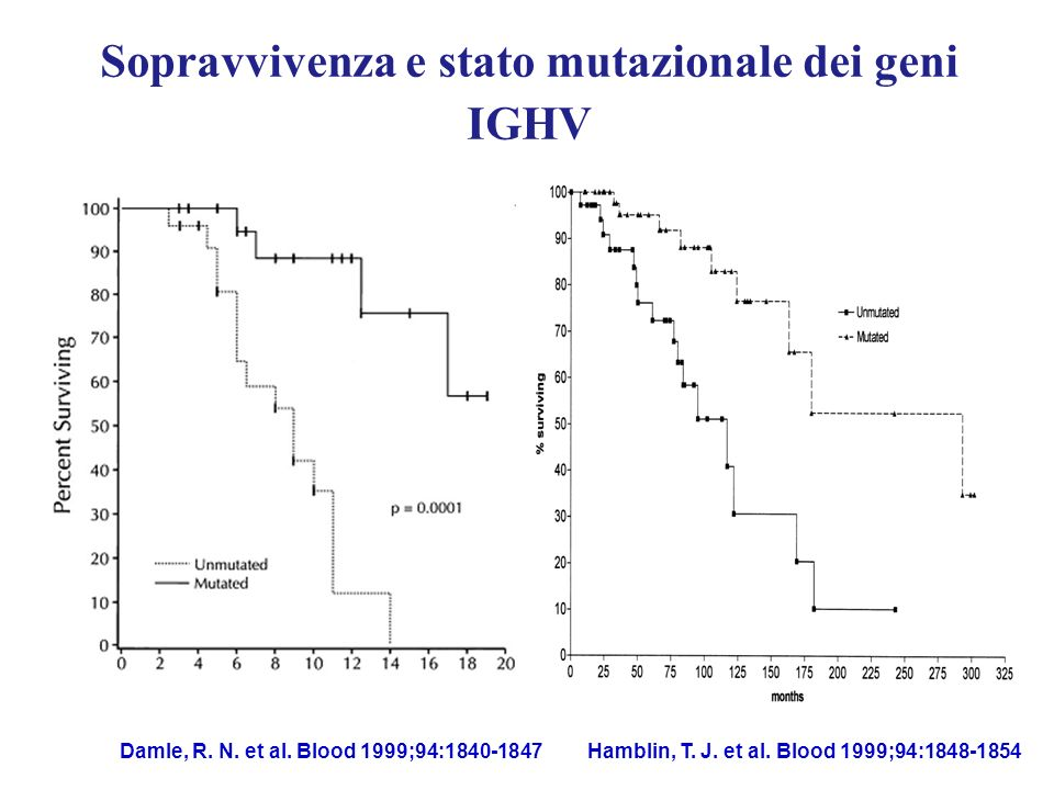 Sopravvivenza e stato mutazionale dei geni IGHV