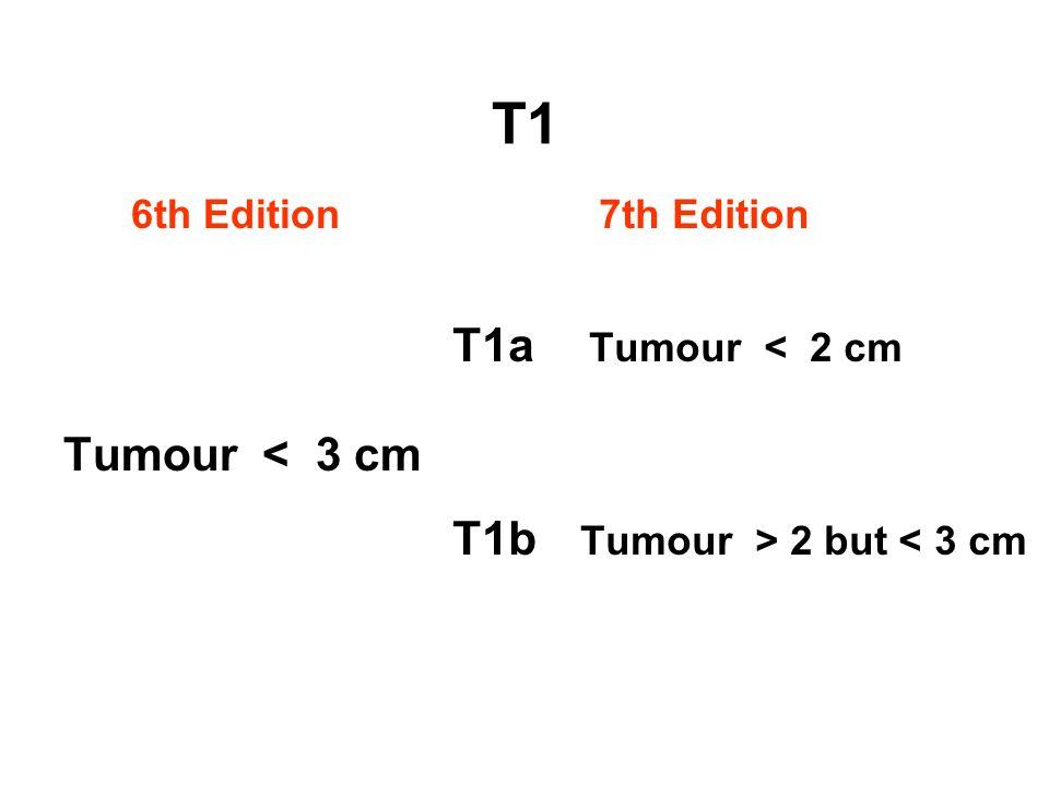 T1b Tumour > 2 but < 3 cm