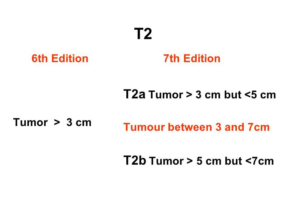 T2a Tumor > 3 cm but <5 cm
