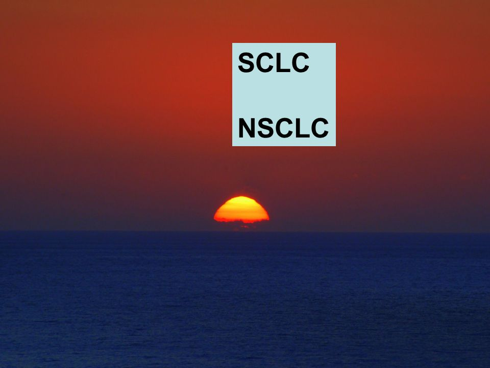 SCLC NSCLC