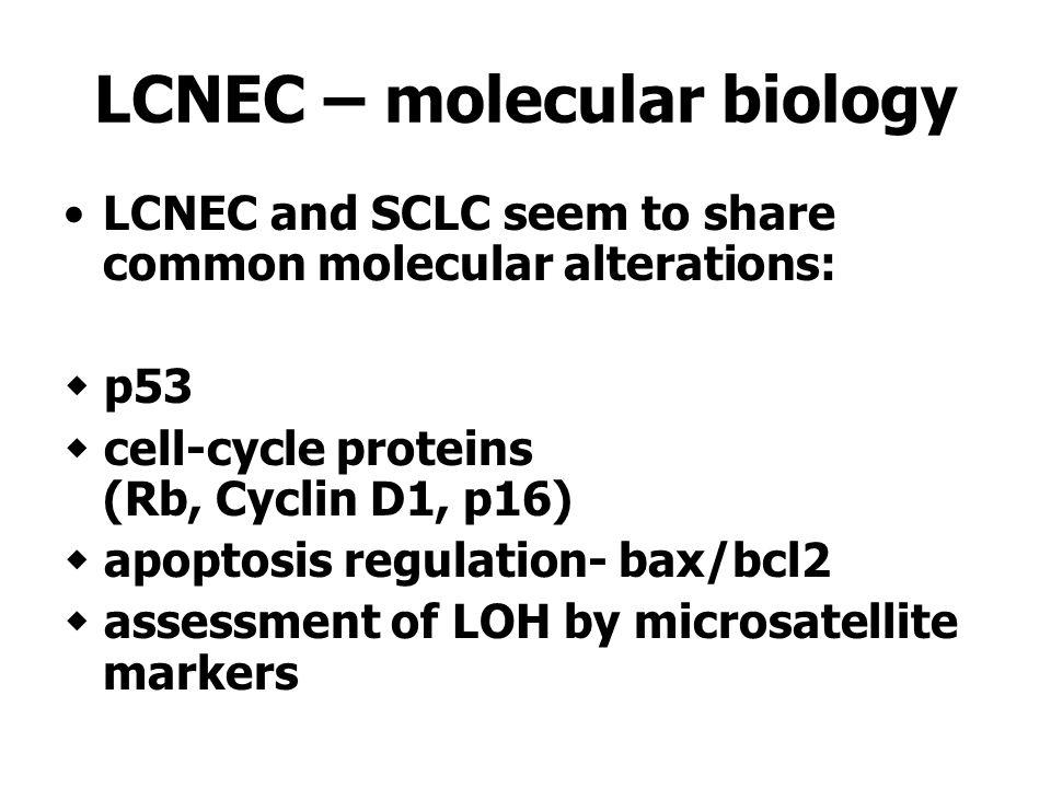LCNEC – molecular biology