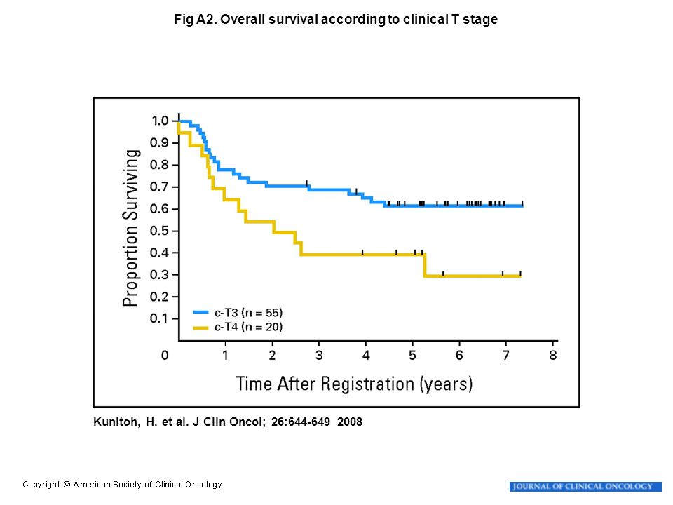 Fig A2. Overall survival according to clinical T stage