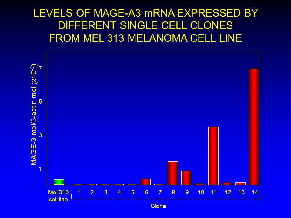 LEVELS OF MAGE-A3 mRNA EXPRESSED BY DIFFERENT SINGLE CELL CLONES