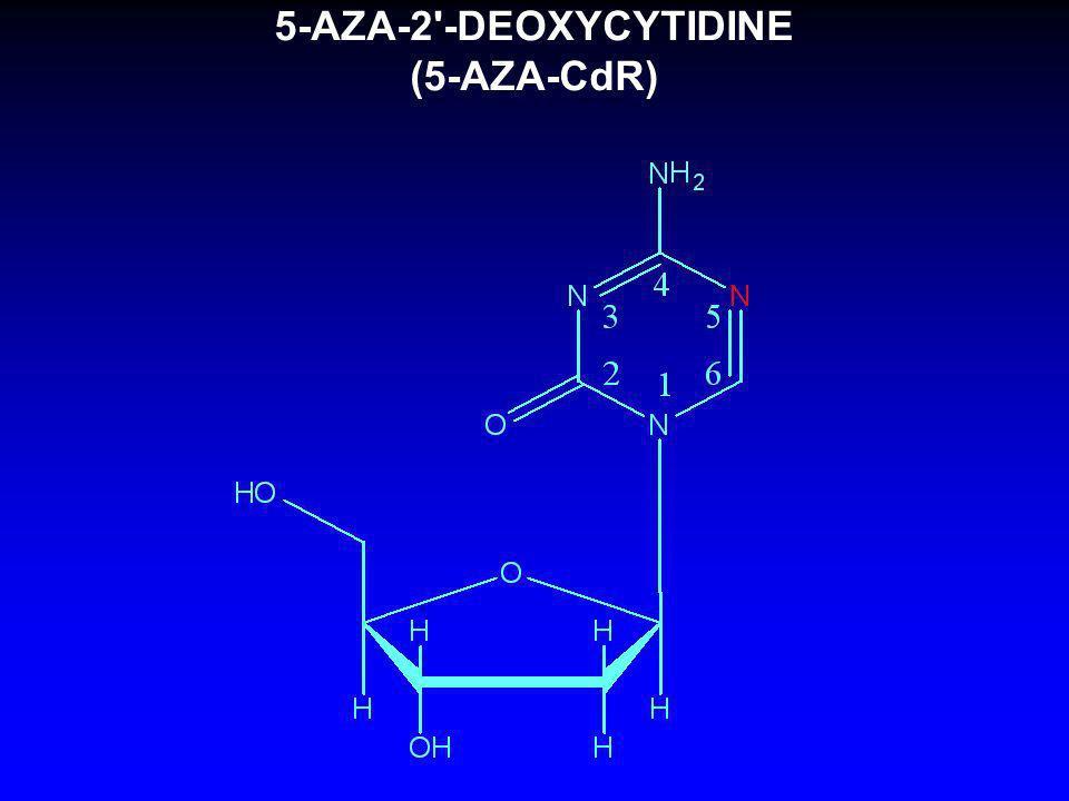 5-AZA-2 -DEOXYCYTIDINE (5-AZA-CdR)