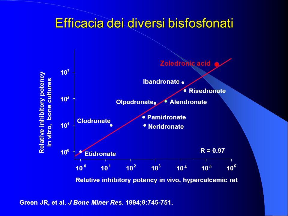 Efficacia dei diversi bisfosfonati