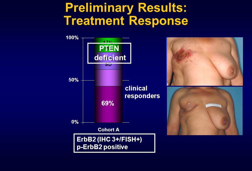 Preliminary Results: Treatment Response