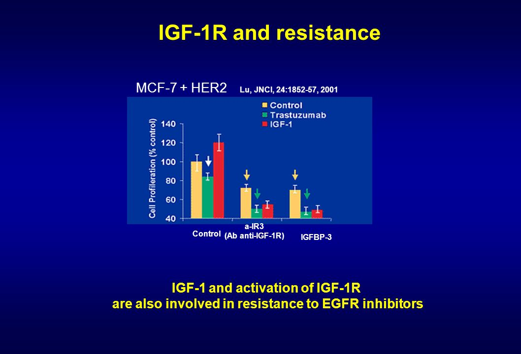 IGF-1R and resistance MCF-7 + HER2 IGF-1 and activation of IGF-1R