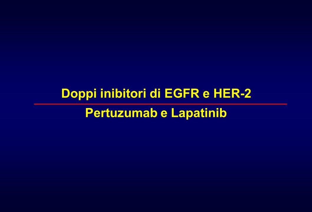 Doppi inibitori di EGFR e HER-2 Pertuzumab e Lapatinib