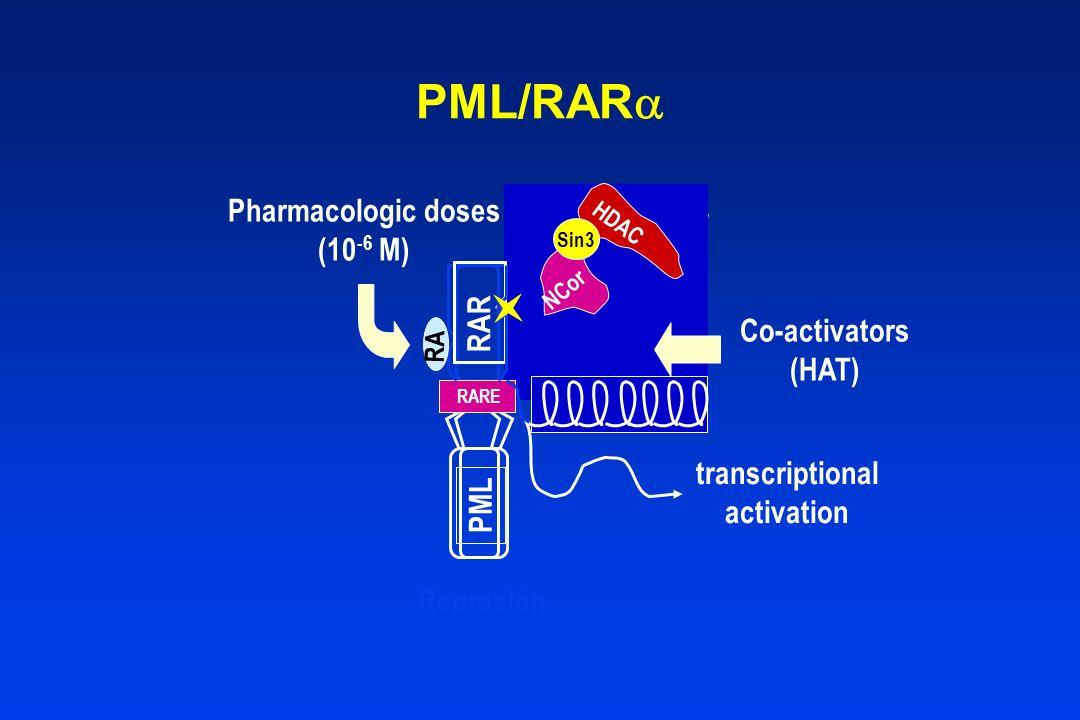 PML/RAR Pharmacologic doses Co-repressor (10-6 M) RAR Co-activators