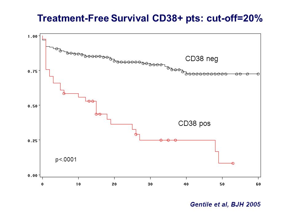 Treatment-Free Survival CD38+ pts: cut-off=20%