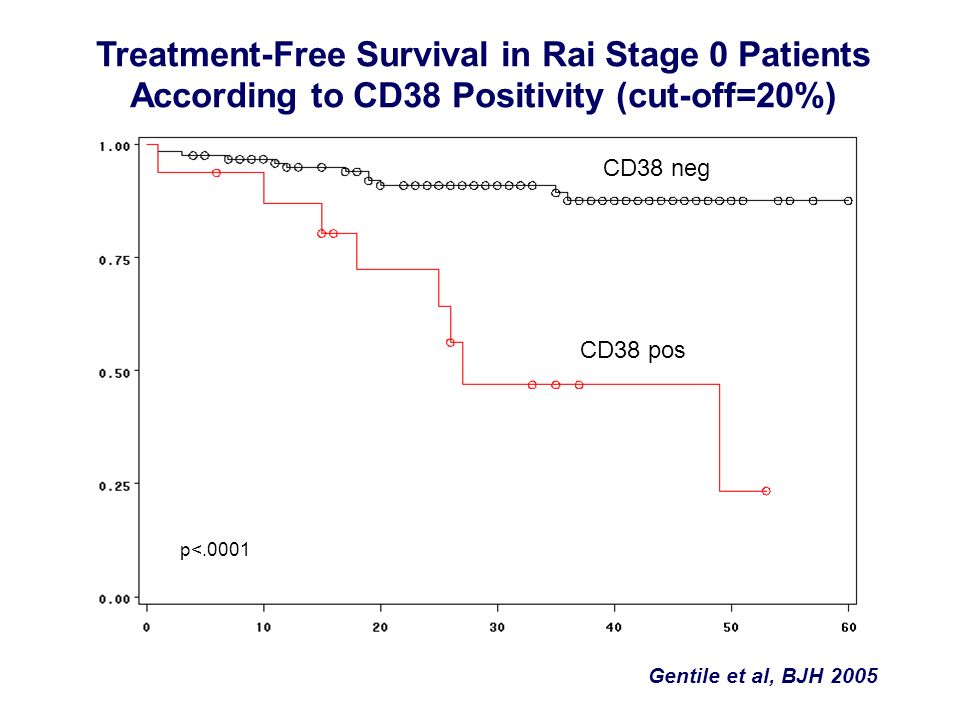 Treatment-Free Survival in Rai Stage 0 Patients According to CD38 Positivity (cut-off=20%)