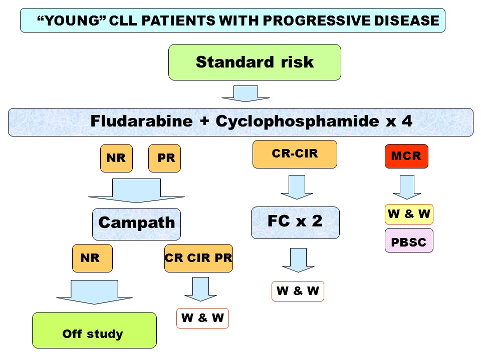 YOUNG CLL PATIENTS WITH PROGRESSIVE DISEASE