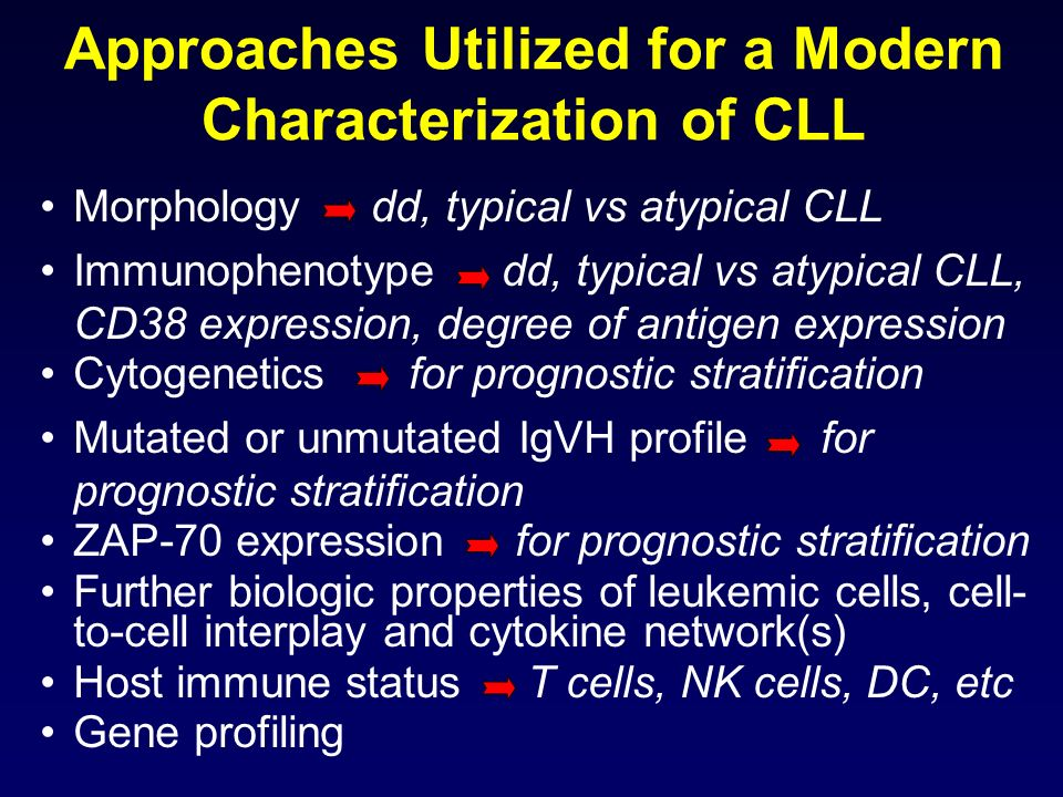 Approaches Utilized for a Modern Characterization of CLL