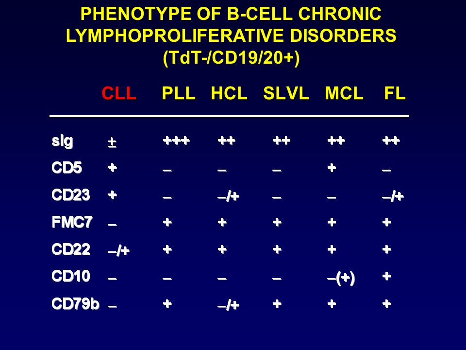 PHENOTYPE OF B-CELL CHRONIC LYMPHOPROLIFERATIVE DISORDERS