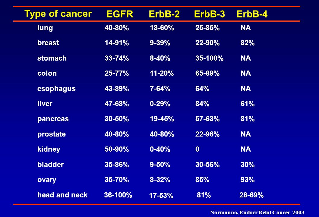 Type of cancer EGFR ErbB-2 ErbB-3 ErbB-4 lung 40-80% 18-60% 25-85% NA