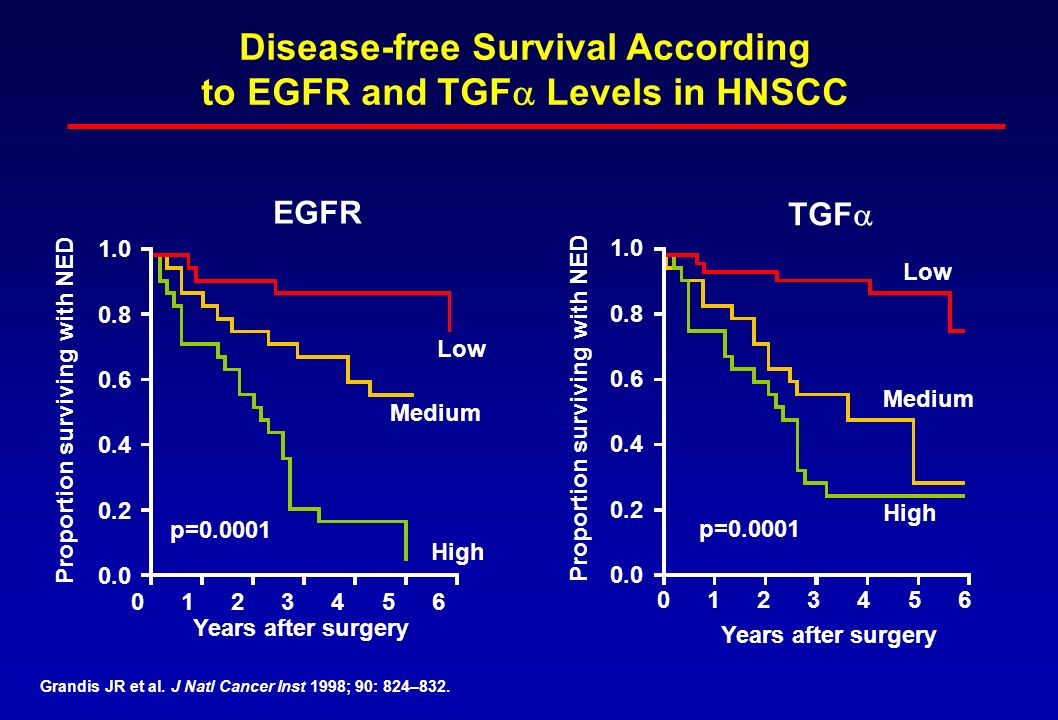 Disease-free Survival According to EGFR and TGFa Levels in HNSCC