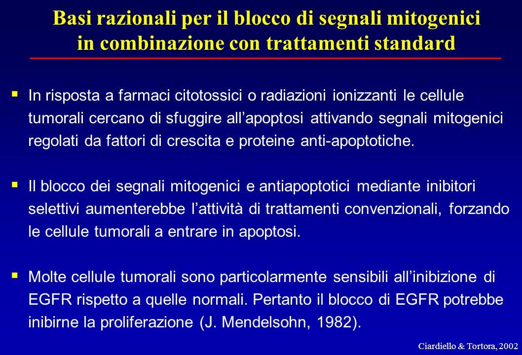 Basi razionali per il blocco di segnali mitogenici in combinazione con trattamenti standard