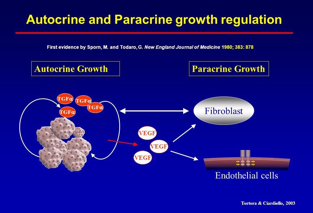 Autocrine and Paracrine growth regulation