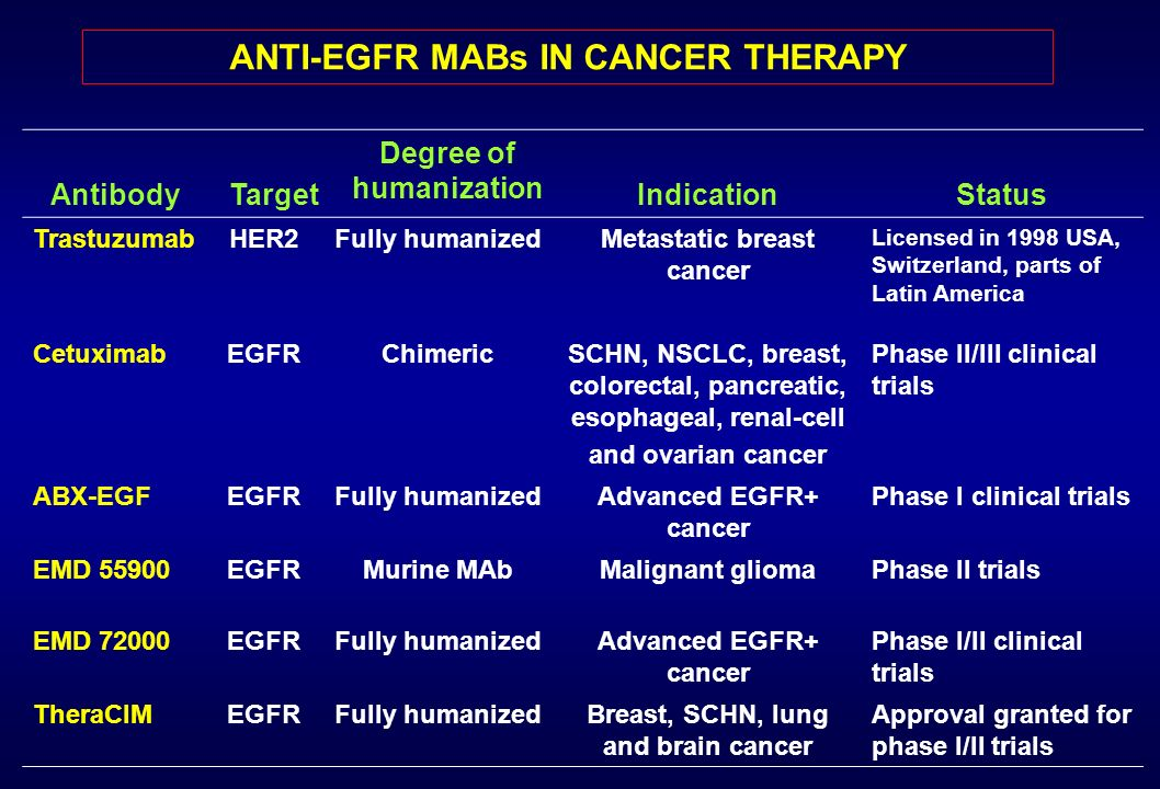 ANTI-EGFR MABs IN CANCER THERAPY