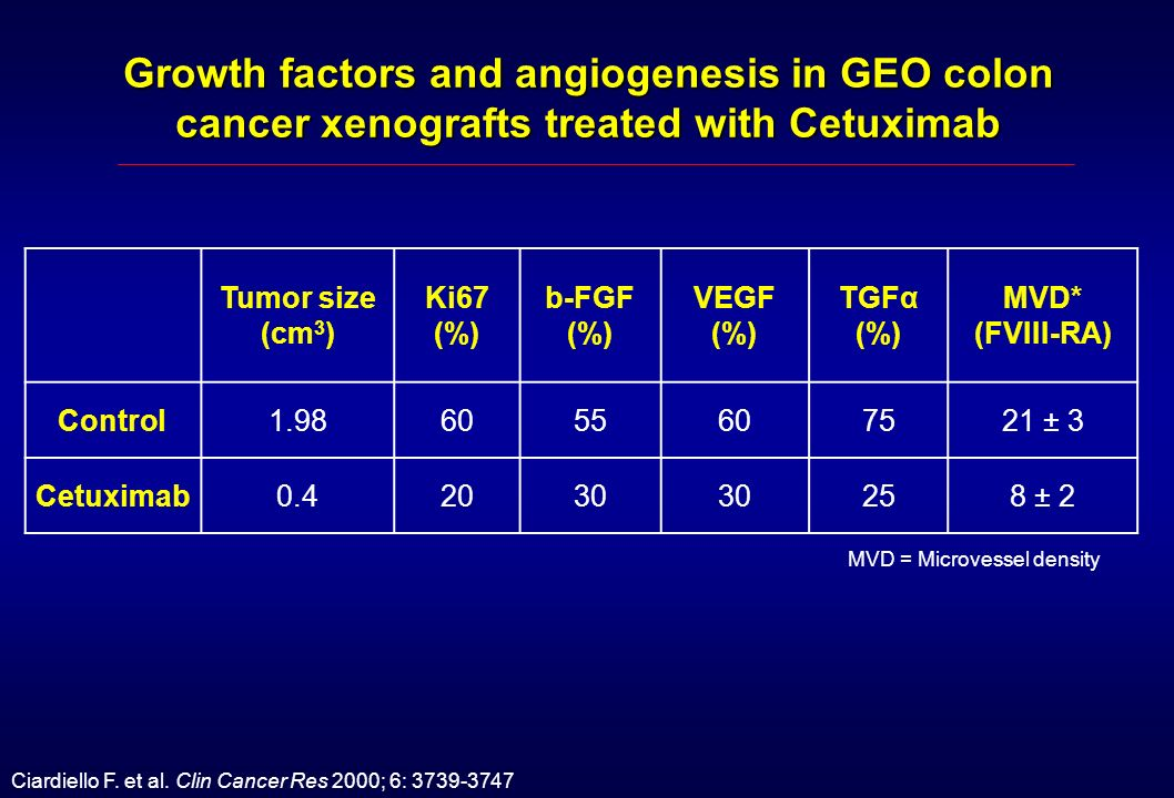 Growth factors and angiogenesis in GEO colon cancer xenografts treated with Cetuximab