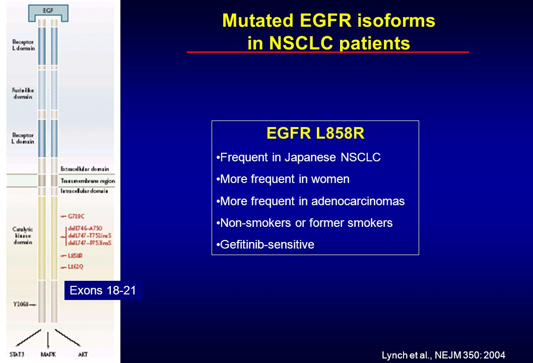 Mutated EGFR isoforms in NSCLC patients