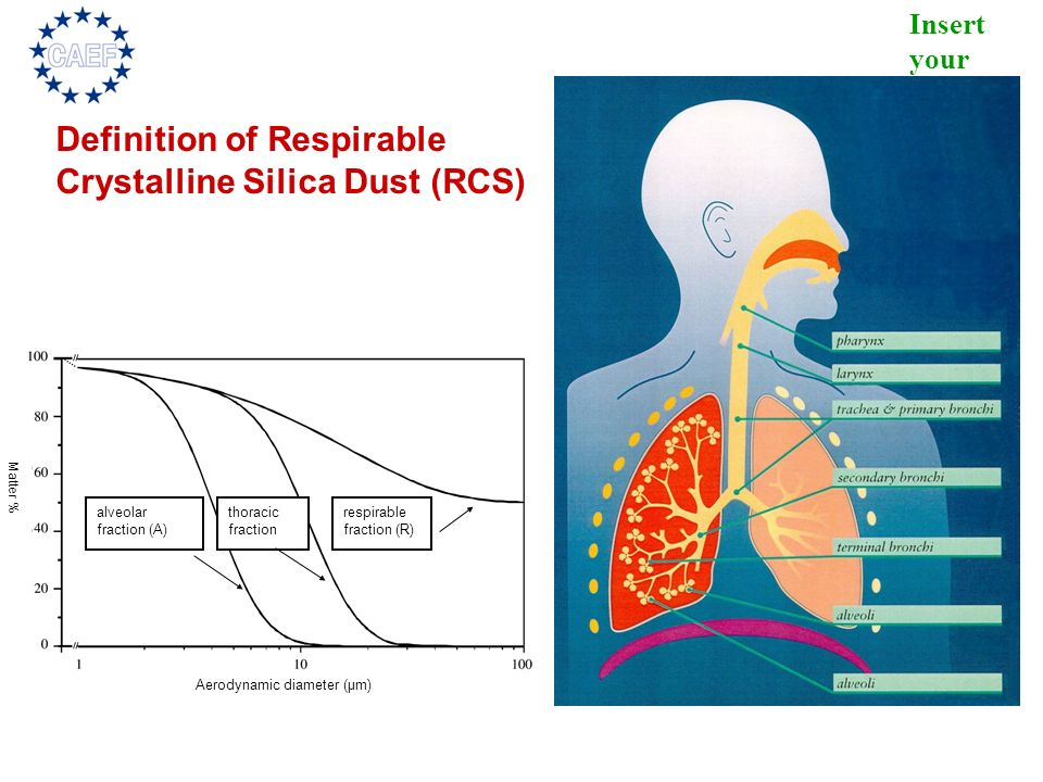 Definition of Respirable Crystalline Silica Dust (RCS)