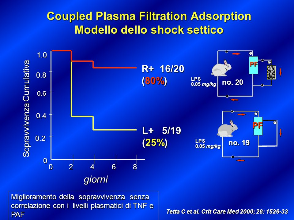 Coupled Plasma Filtration Adsorption Modello dello shock settico