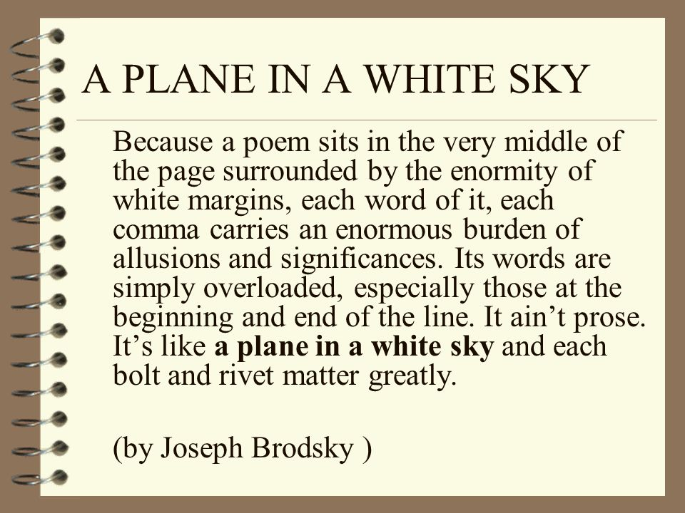 A PLANE IN A WHITE SKY
