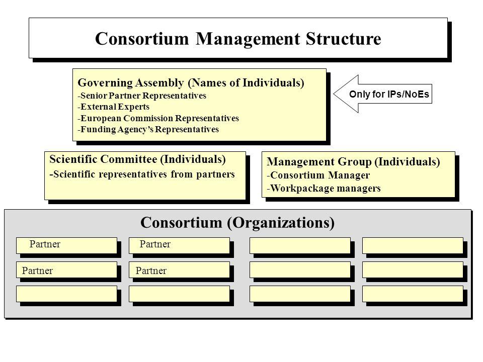 Consortium Management Structure Consortium (Organizations)