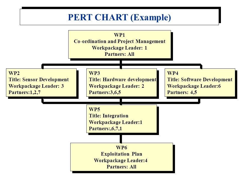 Co-ordination and Project Management