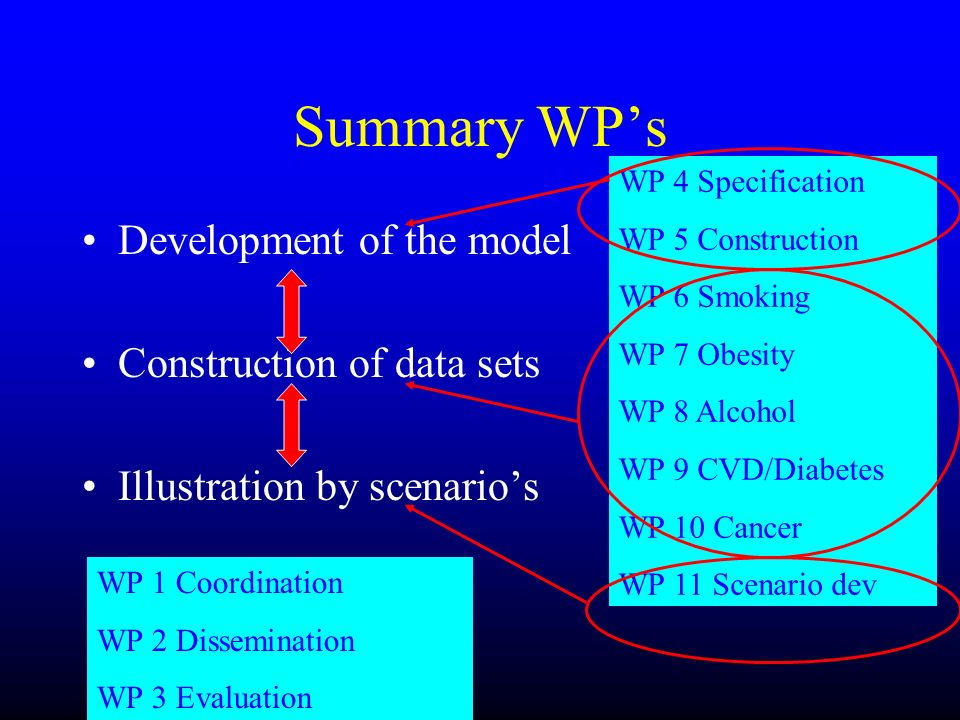Summary WP's Development of the model Construction of data sets