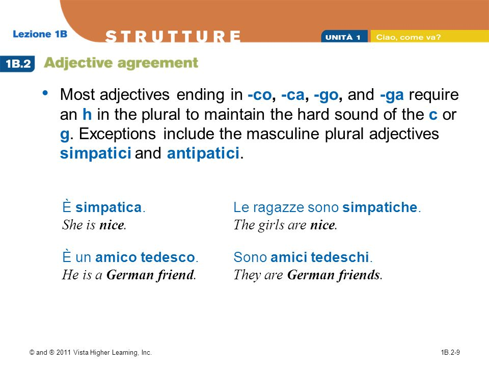 Most adjectives ending in -co, -ca, -go, and -ga require an h in the plural to maintain the hard sound of the c or g. Exceptions include the masculine plural adjectives simpatici and antipatici.