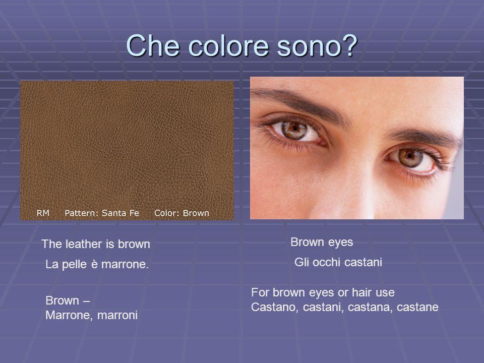 Che colore sono Brown eyes The leather is brown Gli occhi castani