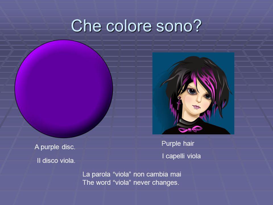 Che colore sono Purple hair A purple disc. I capelli viola