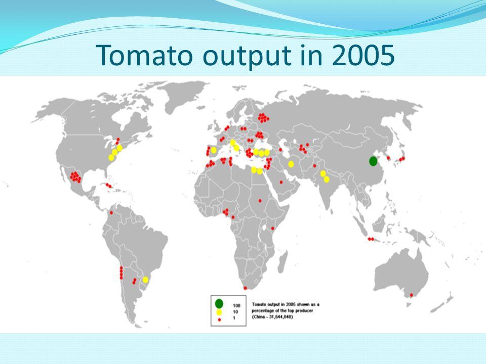 Tomato output in 2005