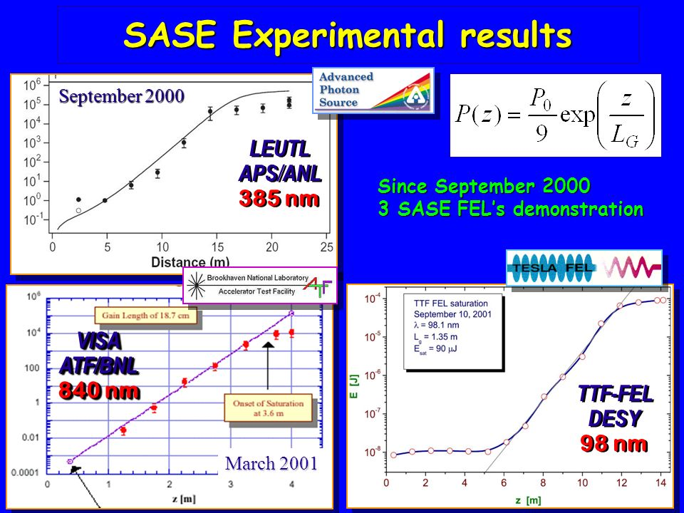 SASE Experimental results