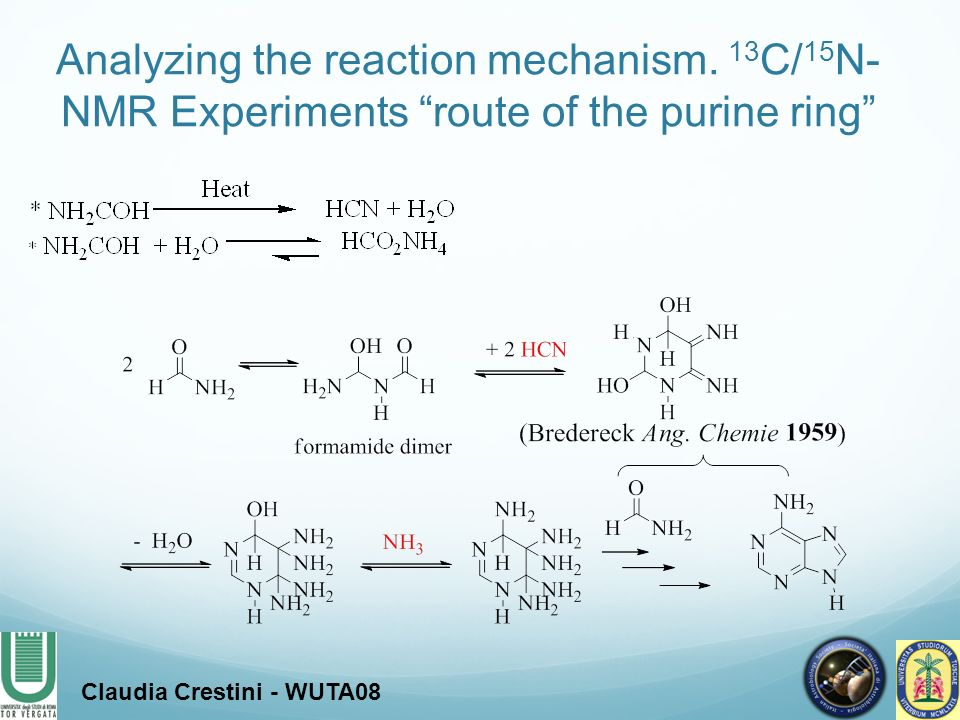 Analyzing the reaction mechanism