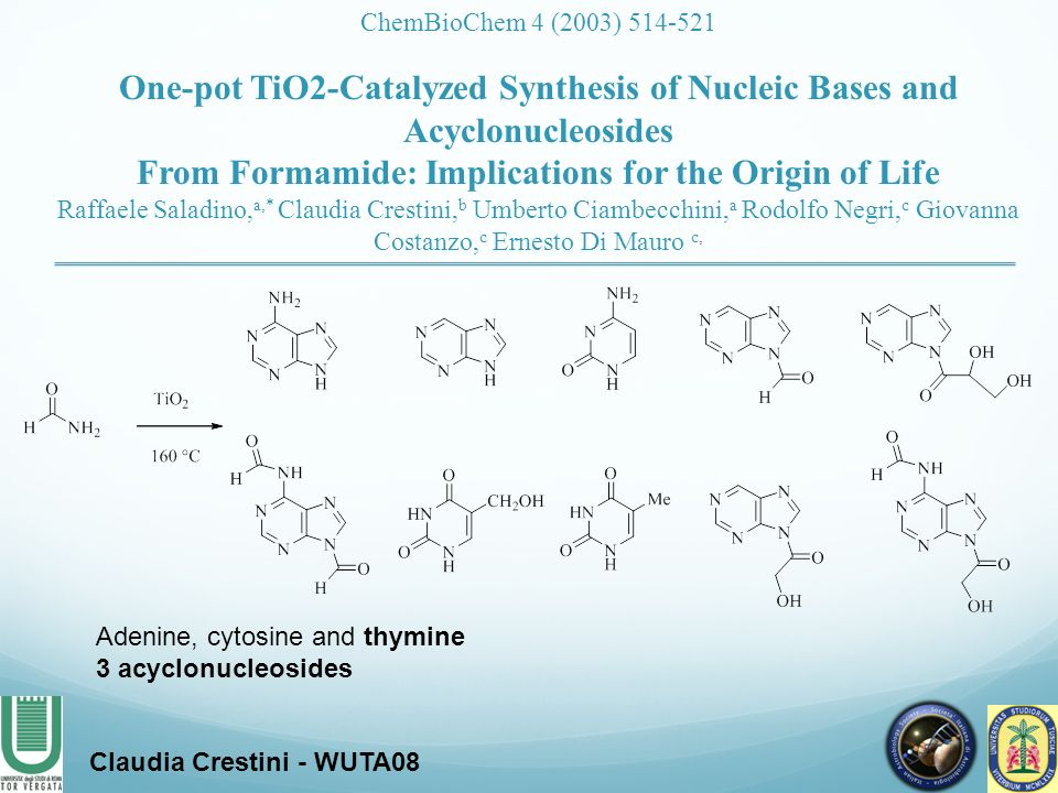 From Formamide: Implications for the Origin of Life