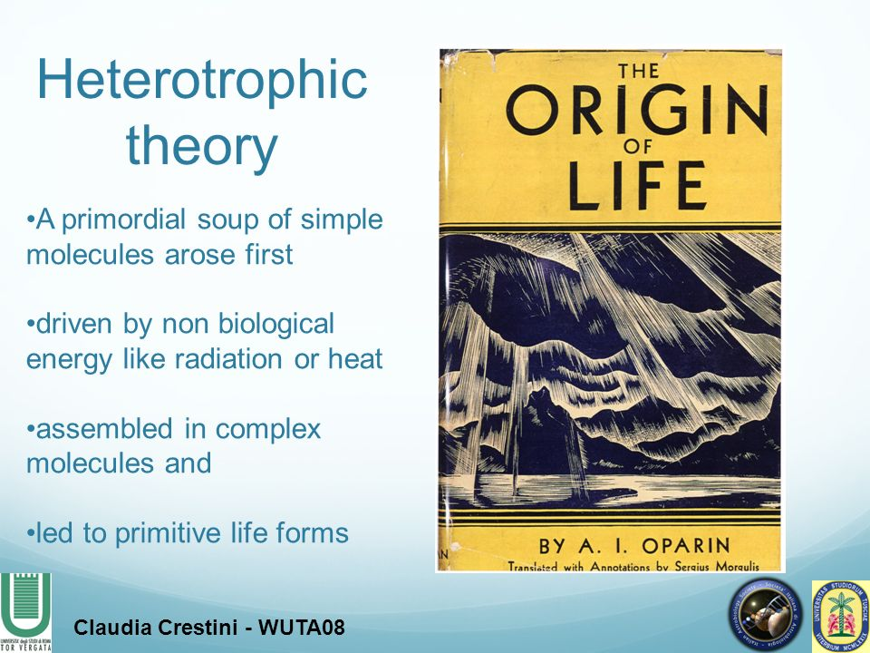 Heterotrophic theory A primordial soup of simple molecules arose first