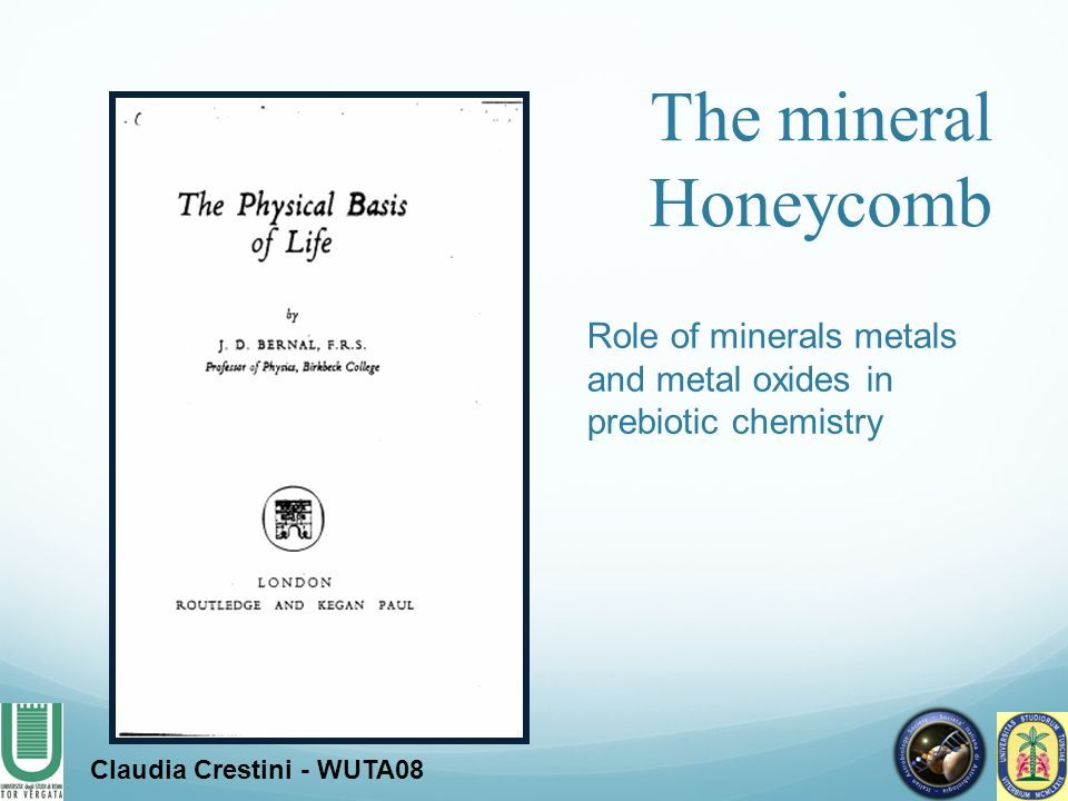 The mineral Honeycomb Role of minerals metals and metal oxides in prebiotic chemistry.