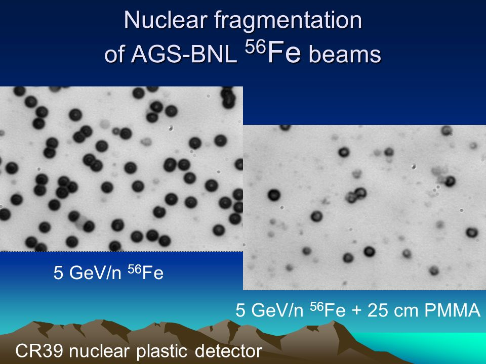 Nuclear fragmentation of AGS-BNL 56Fe beams
