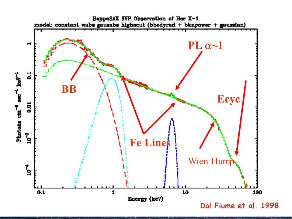 BB Fe Lines PL a~1 Ecyc Wien Hump Dal Fiume et al. 1998