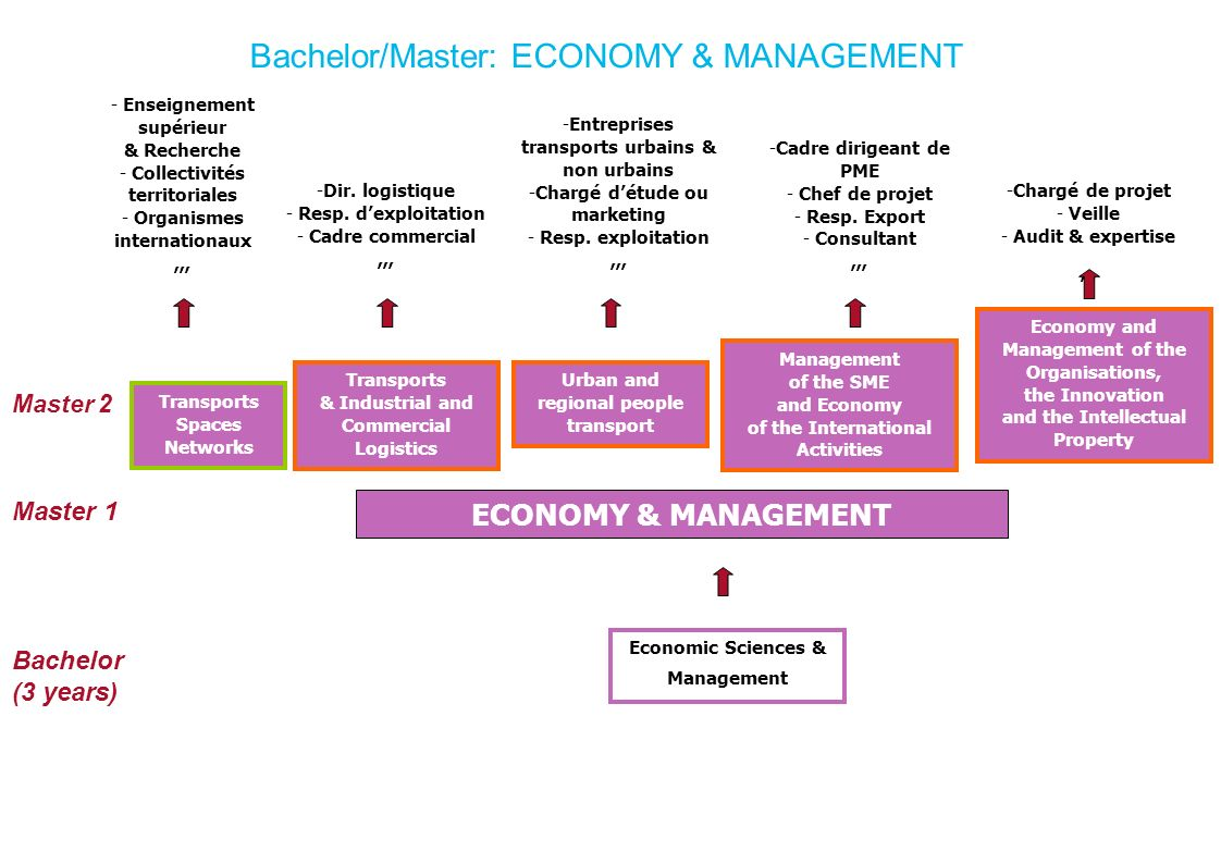Bachelor/Master: ECONOMY & MANAGEMENT